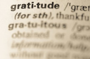 36798008 - definition of word gratitude in dictionary